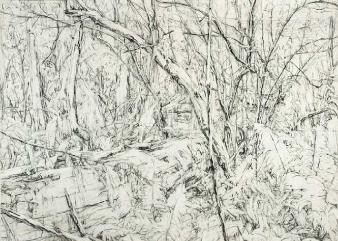cradle-kalorama-2007-charcoal-on-paper-197-x-278-cm