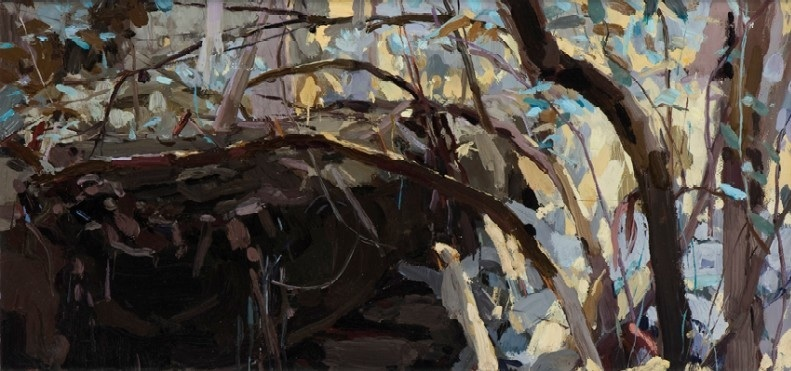 glimmer-kalorama-2009-oil-on-linen-21x44cm