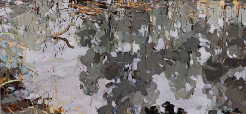 tears-kalorama-2009-oil-on-linen-36x76cm