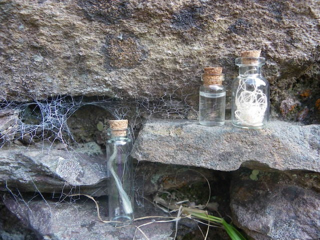intervention-in-ruined-cottage-1-3-specimens